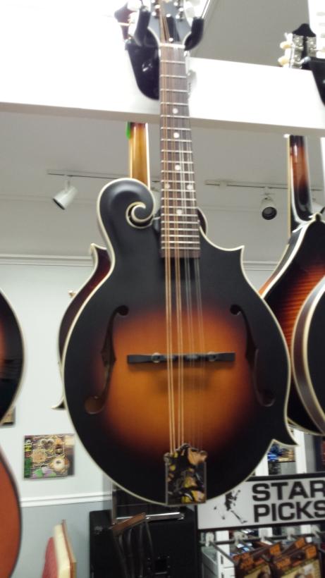 #1 Loar Mandolin $449.99